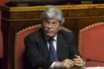Antonio Razzi senatore