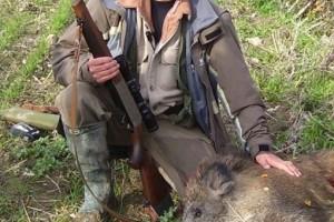 Cinghiale caccia cacciatore