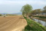 Agricoltura, l'impegno di Legnini