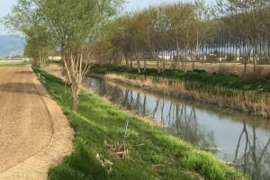 fucino-fiume-agricoltura-abruzzo-notizie-3