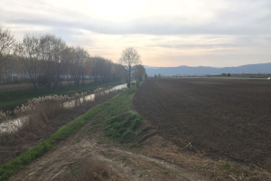 fucino-fiume-agricoltura-abruzzo-notizie-4