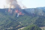 Incidente aereo incendio boschi
