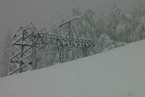 Neve maltempo palo elettrico corrente alberi