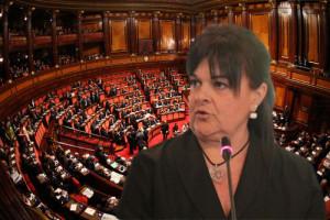 Pezzopane Stefania Senato L'Aquila