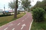 Pista ciclabile bici biciclette Pescara Abruzzo Notizie (2)