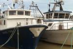 Porto Pescara dragaggio barche nave ormeggio fiume mare Abruzzo Notizie (5)