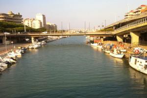 Porto Pescara fiume Abruzzo Notizie (3)