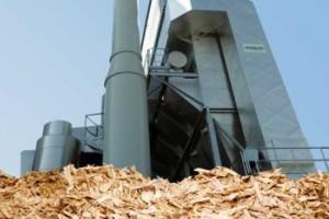 biomasse bazzano