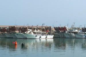 giulianova porto peschereccio affonda